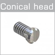99-025XX Conical head screws minus head