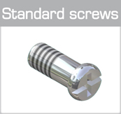 Standard screws (plus-minus head)